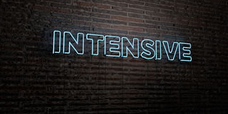 INTENSIVE -Realistic Neon Sign on Brick Wall background - 3D rendered royalty free stock image. Can be used for online banner ads and direct mailers Royalty Free Stock Photos