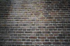 Intensywny koloru ściana z cegieł Zdjęcie Stock