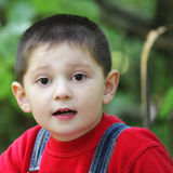 Intent listening facial expression. On little boy face outdoor photo stock image