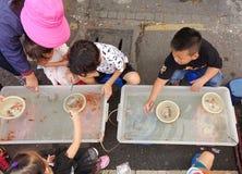 Intento de los niños jovenes para coger el pequeño pez de colores Foto de archivo libre de regalías