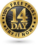 14 - intento del ensayo libre del día él ahora etiqueta de oro, ejemplo del vector Foto de archivo