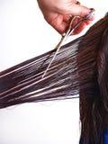 Intento del hombre para cortar los pelos de la mujer Foto de archivo