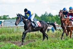 Intento fallido de los caballos que compiten con que comienzan una raza Fotografía de archivo