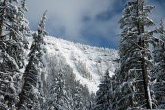 Inter Lasowej krater góry krajobrazu Jeziornej Śnieżnej fotografii Oregon północnego zachodu góry Pacyficzni drzewa Zdjęcia Royalty Free
