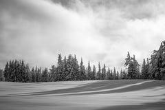 Inter Lasowej krater góry krajobrazu Jeziornej Śnieżnej fotografii Oregon północnego zachodu góry Pacyficzni drzewa Zdjęcie Royalty Free