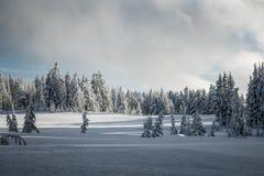 Inter Lasowej krater góry krajobrazu Jeziornej Śnieżnej fotografii Oregon północnego zachodu góry Pacyficzni drzewa Obrazy Royalty Free