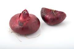 Intera cipolla rossa e una metà Immagini Stock