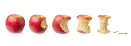 Intera e mela provata fresca Immagini Stock