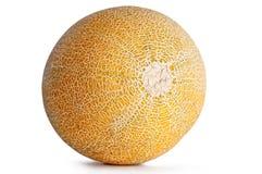 Intera Galia Melon su bianco Fotografia Stock
