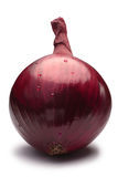 Intera lampadina della cipolla rossa, percorsi Fotografia Stock Libera da Diritti