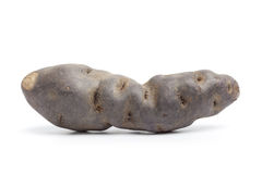 Intera patata fresca del noir di Vitelotte immagine stock libera da diritti