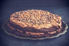 Intera torta di cioccolato Immagine Stock