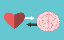 Interacción del corazón y del cerebro libre illustration