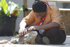 Interact with the animals. Scouts try to interact with the animals in the city of Solo, Central Java, Indonesia Stock Photos