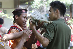 Interact with the animals. Scouts try to interact with the animals in the city of Solo, Central Java, Indonesia Stock Image