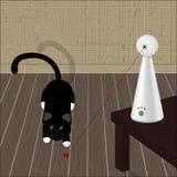 Interaktywna laser zabawka dla kotów i czarnego kota na podłoga Obraz Royalty Free