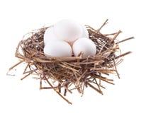 Intercali con le uova Immagine Stock