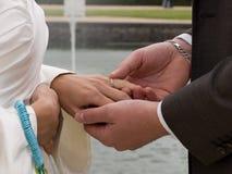 Intercambiar los anillos de bodas Imágenes de archivo libres de regalías