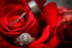 Interdiction de bague de fiançailles et de mariage dans Rose rouge Photographie stock libre de droits