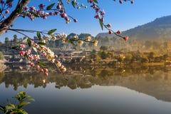 Interdisez le village thaïlandais de Rak, un règlement chinois Images libres de droits
