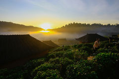 Interdisez le village thaïlandais de Rak, un règlement chinois en Mae Hong Son, Thaïlande images libres de droits