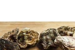 Intere ostriche fotografia stock libera da diritti