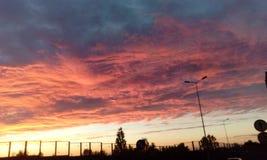 Interessante mening van de hemelvan de summerÂzonsondergang Stock Afbeeldingen