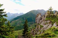 Interessante rotsen op de achtergrond van de schilderachtige vallei Stock Foto's