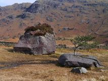 Interessante stenen dichtbij Stythwaite-Stappen, Meerdistrict Stock Foto