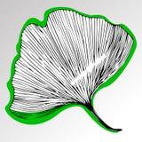 Interessante textuur van bladeren op de achtergrondtextuur van bladeren Royalty-vrije Stock Afbeelding