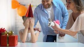 Interessierende Eltern, die der kleinen Tochter Überraschung darstellt kleines nettes Häschen machen stock footage