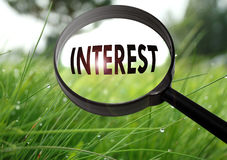 Interest. Magnifying glass with the word interest on grass background. Selective focus Royalty Free Stock Photos