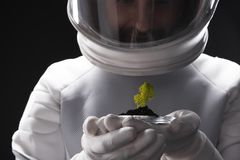Free Interested Cosmonaut Is Discovering New Organism Royalty Free Stock Photography - 106121197