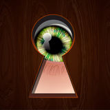 Interested Eye looking in keyhole Stock Photography