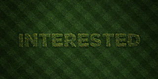 INTERESTED - fresh Grass letters with flowers and dandelions - 3D rendered royalty free stock image Stock Photos