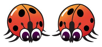 Interested Ladybugs. Two shiny cartoon ladybugs have encountered each other and are checking each other out Stock Photos