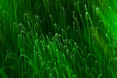 Interesting abstract background green sparks Stock Images