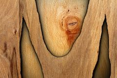Interesting abstract wood Royalty Free Stock Photos