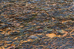 Interesting background of wet stone at the beach. Interesting pattern and texture of wet stone background on the beach Royalty Free Stock Photos