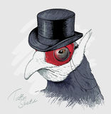 Interesting bird in black top hat and monocle. Sketch. Royalty Free Stock Images