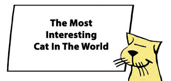 Interesting. Cartoon illustration of a smiling cat and the words, `The most interesting cat in the world Royalty Free Stock Photography