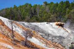 Interesting formations of Palette Spring, Yellowstone National Park royalty free stock images
