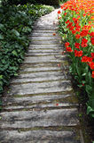 Interesting garden pathway Royalty Free Stock Photo