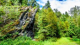 Rock feature along the hiking trail to Whitecroft Falls in British Columbia, Canada. Interesting geological rock feature along the hiking trail to Whitecroft royalty free stock images