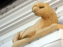 Interesting panther statue. Interesting panther statue on Schuller House in Medias, Romania Stock Photos
