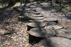 Stepping on autumn wooden stumps. Black and white royalty free stock photos