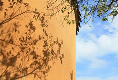 Shadows on the wall. This is an interesting photograph. The shadow of the branch falls on the orange wall. It is very beautiful royalty free stock photography