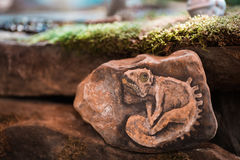 Interesting reptile depicted in stone the edge of the forest. stock photos