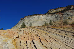 Interesting rock layers in Zion National Park, Utah Royalty Free Stock Images