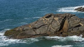 Interesting rock looks like animal face. Stones that look like animals, crocodile or alligator. The rock looks like a crocodile or alligator. Rio de Janeiro royalty free stock photo